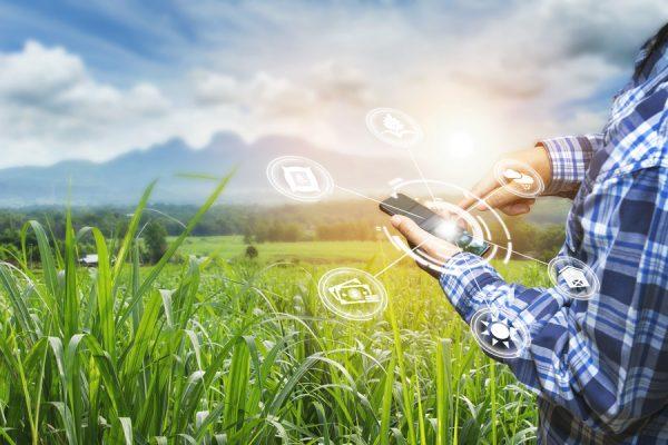 uninimex-agricultura-inteligente